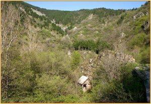 Rezervaţia mulinologică Cheile Rudariei Caras Severin