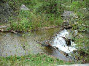 Morile de apa de pe cheile Rudariei Caras Severin