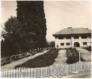 Parc anii 50